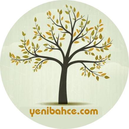 ardıç ağacı budama