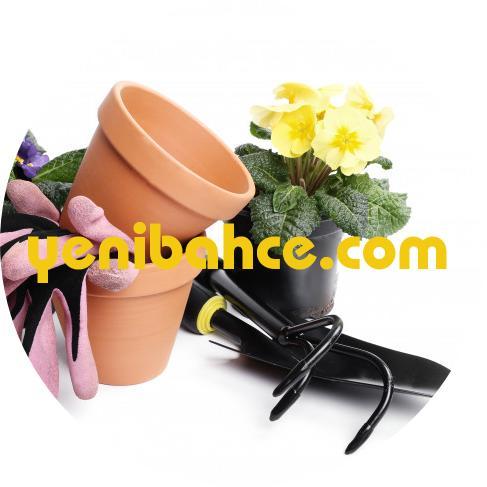 florya bahçıvan